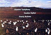 John Adams - Chamber Symphony (John Adams Earbox CD cover (Nonesuch)